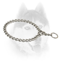 Strong Siberian Husky     collar Fur Saver
