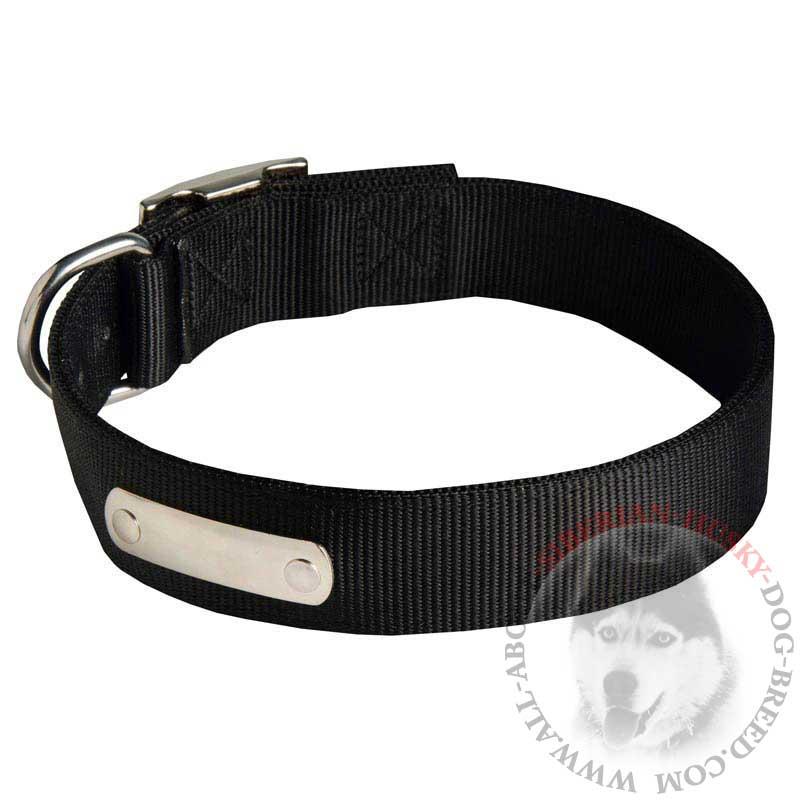 Training Nylon Siberian Husky Collar with Metal Tag for Identification