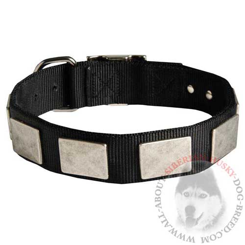 Strong Nylon Dog Collar for Siberian Husky Walking and Training