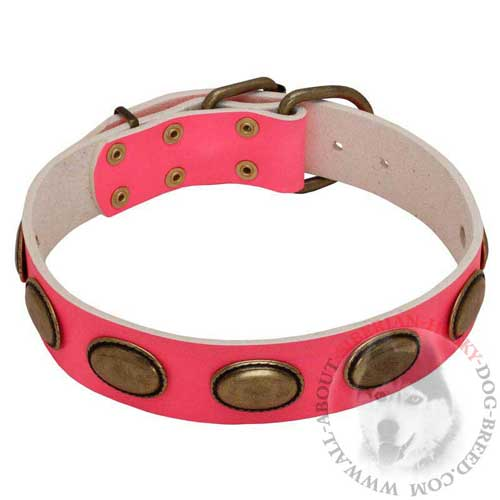 Pink Leather She-Dog Collar for Siberian Husky