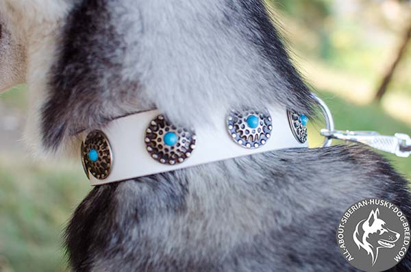 Hand Decorated White Dog Collar with Silver-like Brooches