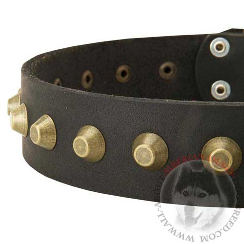 Leather Siberian Husky Collar Wide Studded with Brass Pyramids