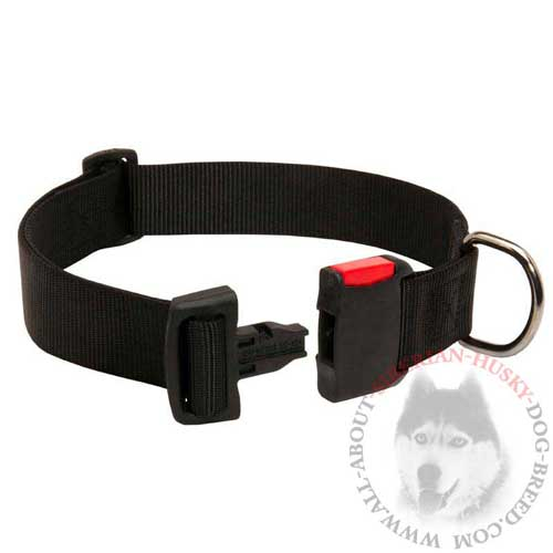 Wide Siberian Husky Collar Nylon with Easy Release Buckle