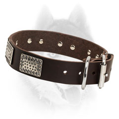 Rust proof fittings for Siberian Husky leather collar