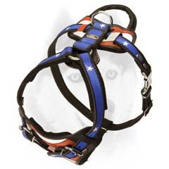 Agitation training harness for your Siberian Husky