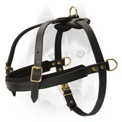 Strong durable leather Siberian Husky harness