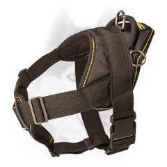 Protective nylon harness for Siberian Husky