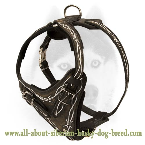 Extra Small Dog Traveling Harness