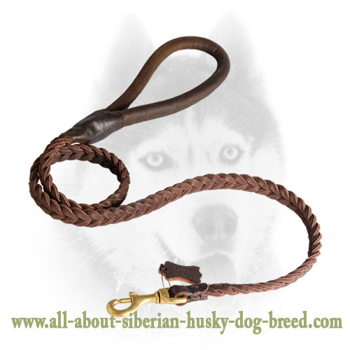Braided Leather Siberian Husky Leash with Round Handle
