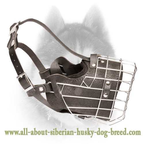 Super Strong Wire Cage Muzzle for Siberian Husky