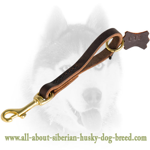 Fast Grab Pull Tab Leather Siberian Husky Leash
