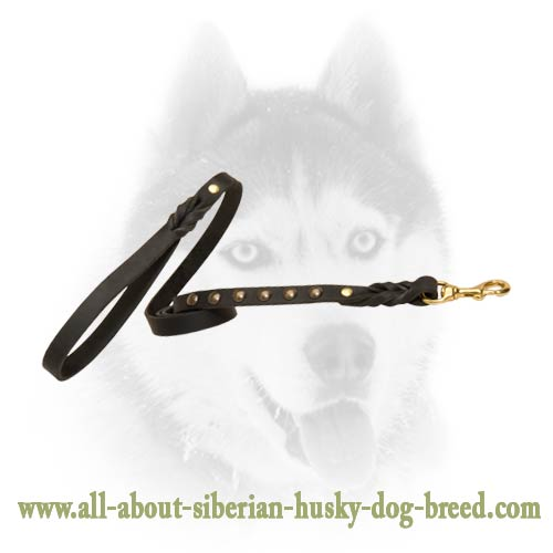 Handcrafted leather studded leash for Siberian Husky
