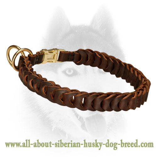 Fantastic Leather Braided Choke Collar for Siberian Husky Breed