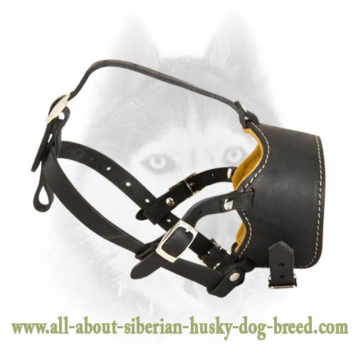 Four Ways Adjustable Muzzle for Siberian Husky