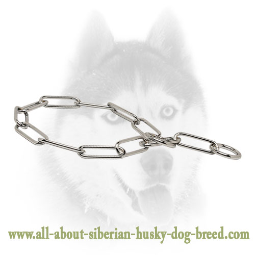 Stainless Steel Fur Saver Dog Collar 'Iron Trainer' - 1/6 inch (4.0 mm) link diameter