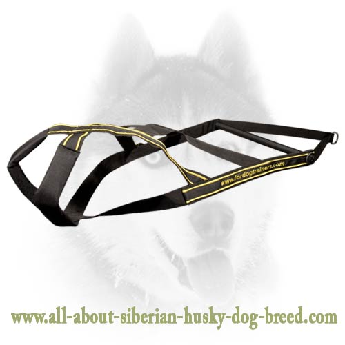 Nylon heavy duty pulling harness for Siberian Husky
