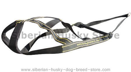 Nylon Weight Pulling Harness for Siberian Husky