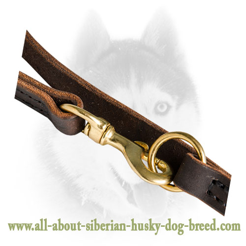 Multifunctional Leather Leash for Boxer