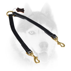 Quality leather Siberian Husky coupler with brass metalware