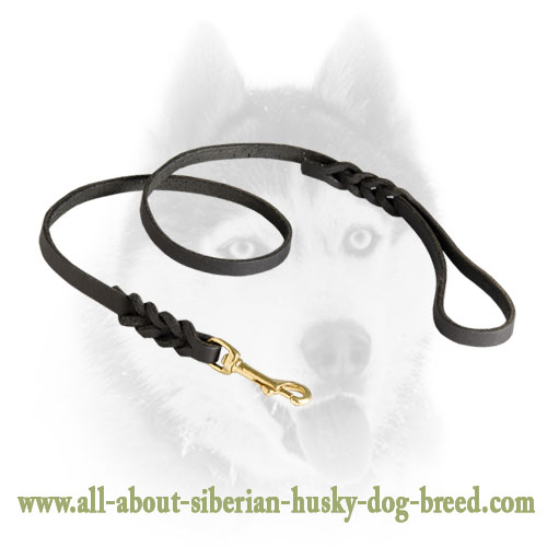 Strong leather leash with brass snap hook for Siberian Husky