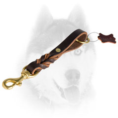 Short Siberian Husky leash for utmost control