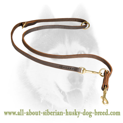 Brass Snap Hooks and O-rings for Siberian Husky Leash