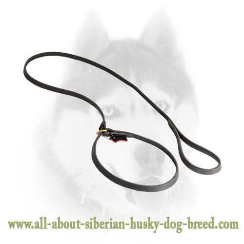 Siberian Husky Leather Leash plus Collar