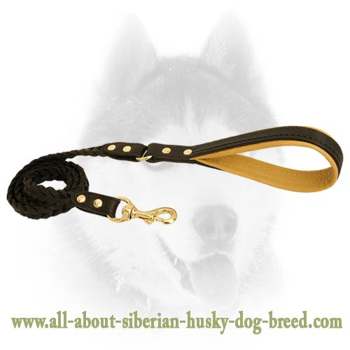 Completely safe leash for Siberian Husky