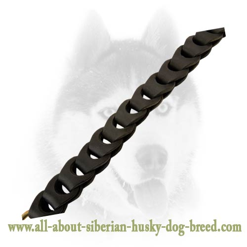 Original braided leather leash