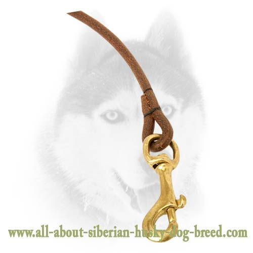 Best quality leather round leash