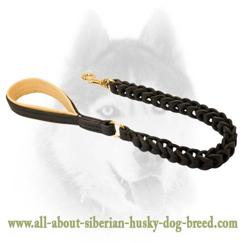 Completely safe leather leash