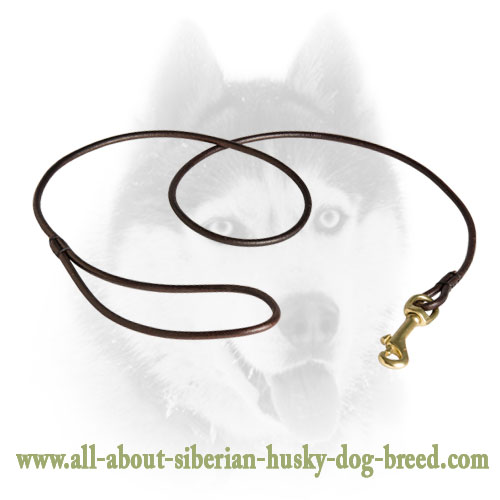 Long Servicing Round Leather Dog Leash