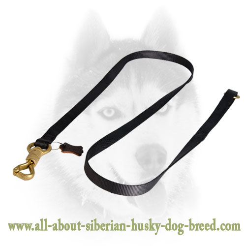 All Weather Siberian Husky Dog Leash made of strong Nylon