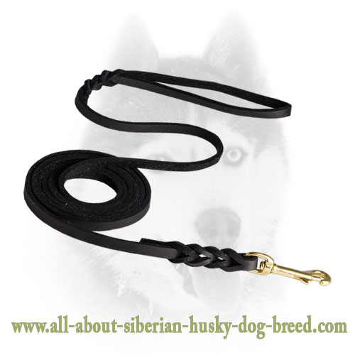 Leather leash with short braids for Siberian Husky