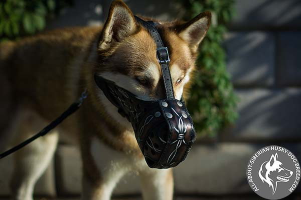 Comfortable Leather Dog Muzzle  with Regulated in Size Straps