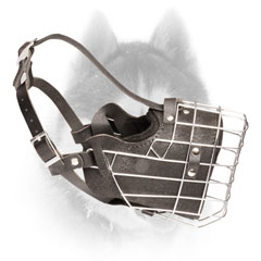 Durable leather padded wire cage Siberian Husly muzzle