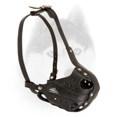 Leather muzzle with perfect air flow