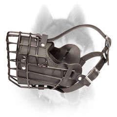 Practical wire cage Siberian Husky muzzle