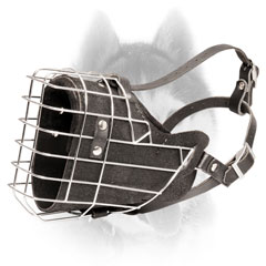 Wire Siberian Husky muzzle for attack/agitation work
