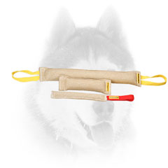 Set of jute tugs for training Siberian Husky