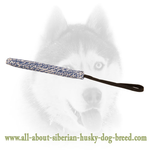 French Linen Bite Tug For Siberian Husky