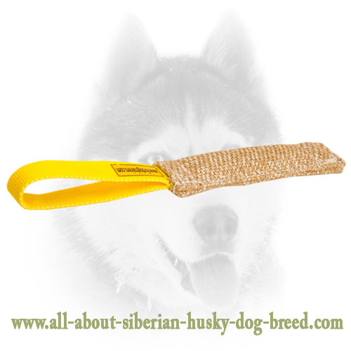 Jute Siberian Husky bite tug for puppies