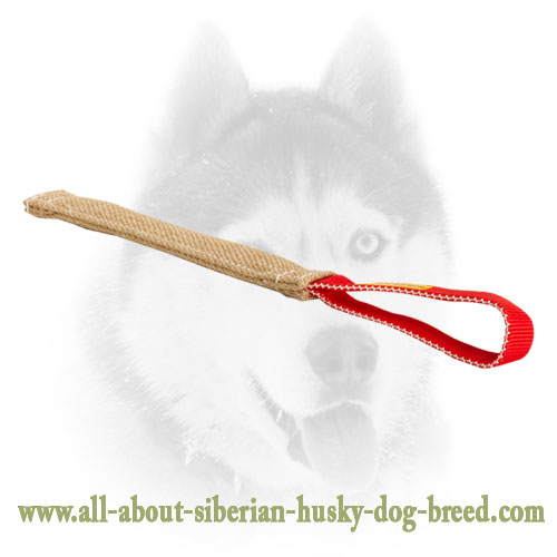Jute Pocket Toy with 1 Handle for Siberian Husky