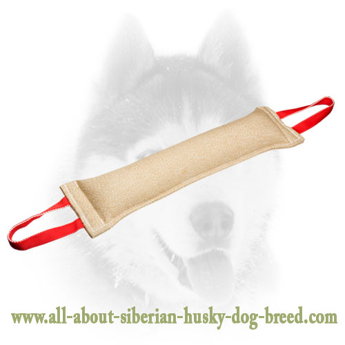 Jute Siberian Husky tug with stitched handles