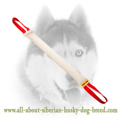 Durable Fire Hose Siberian Husky tug with stitched handles