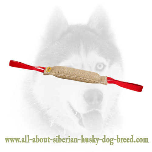 Stitched Jute Bite Tug For Siberian Husky