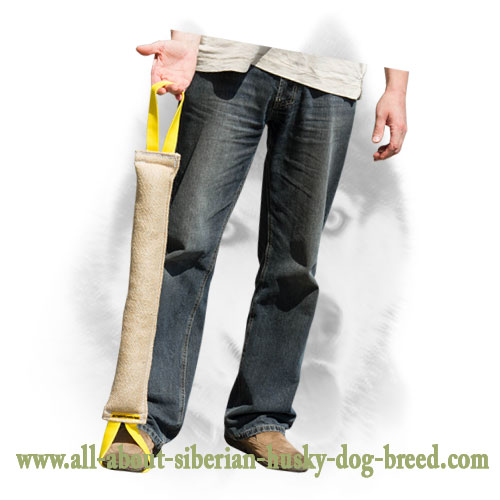 Multifunctional jute bite tug for Siberian Husky