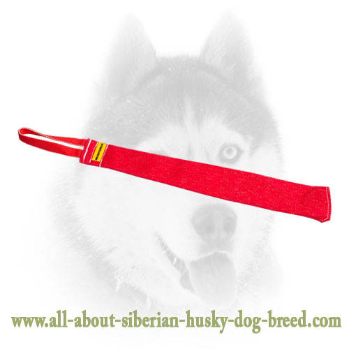 French Linen Siberian Husky bite rag with handle