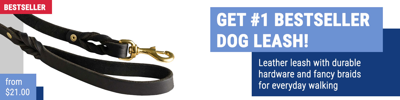 Royal Quality Leather Siberian Husky Leash for Walking and Training